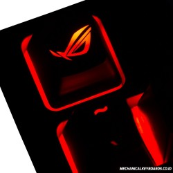 ROG ABS Backlit Keycap