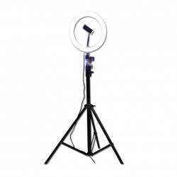 O Ring LED Stand Lighting