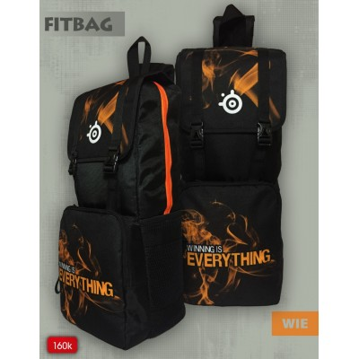 Fit Bag Steelseries WIE V2